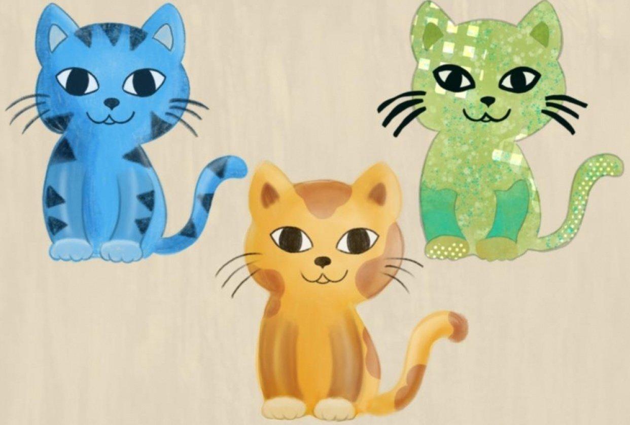 Catsanova - student project