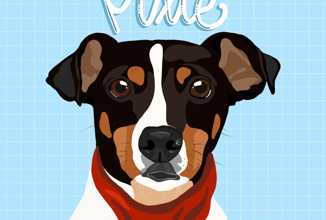 Pixie - student project
