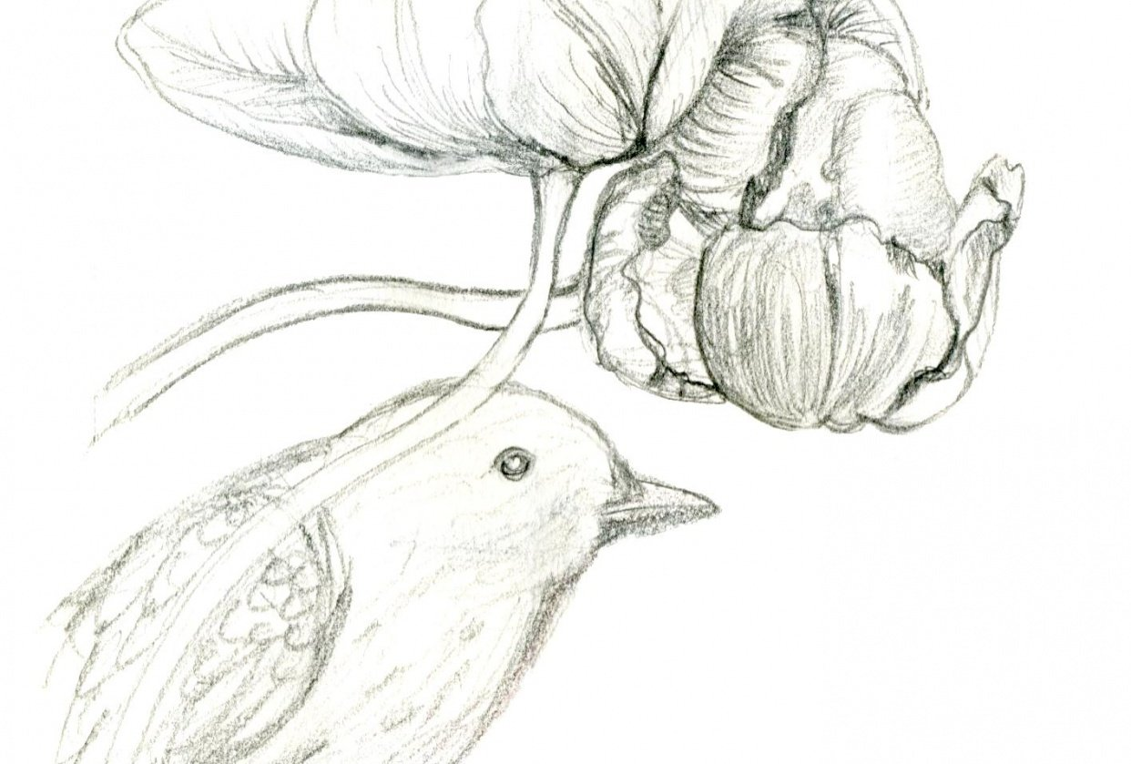 Tulips and Blackbird - student project