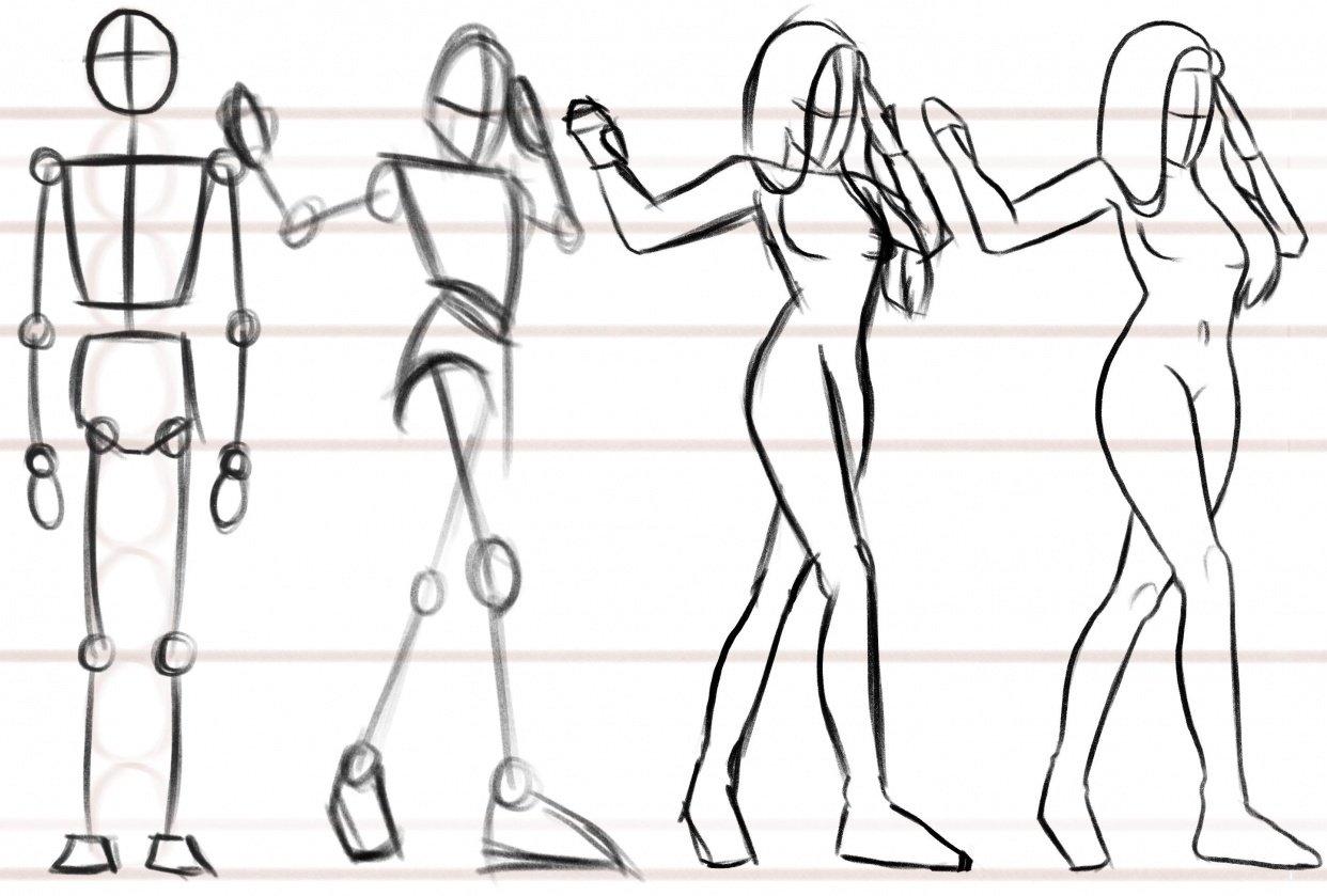 Female body anatomy. - student project