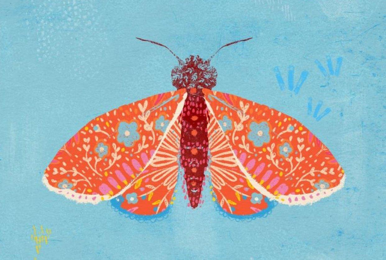 Moth & Mandala - student project