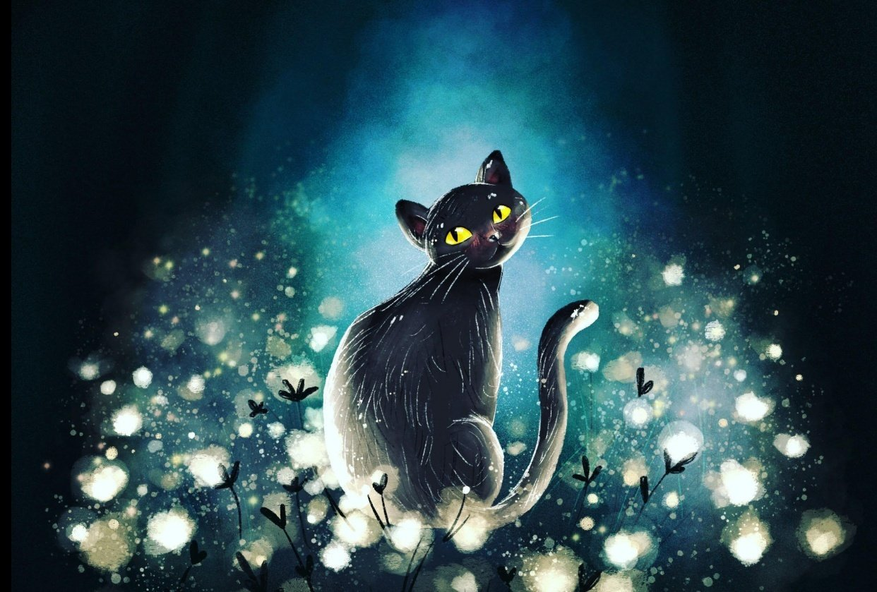 Magical cat - student project