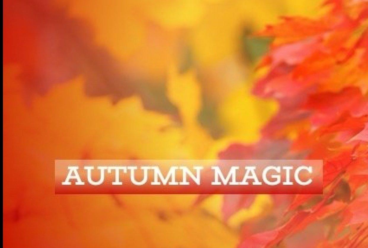 Autumn Magic - student project