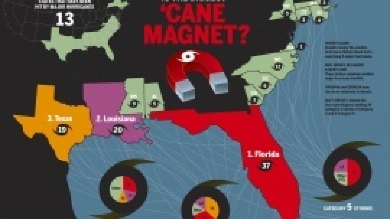 Cane Magnet - student project