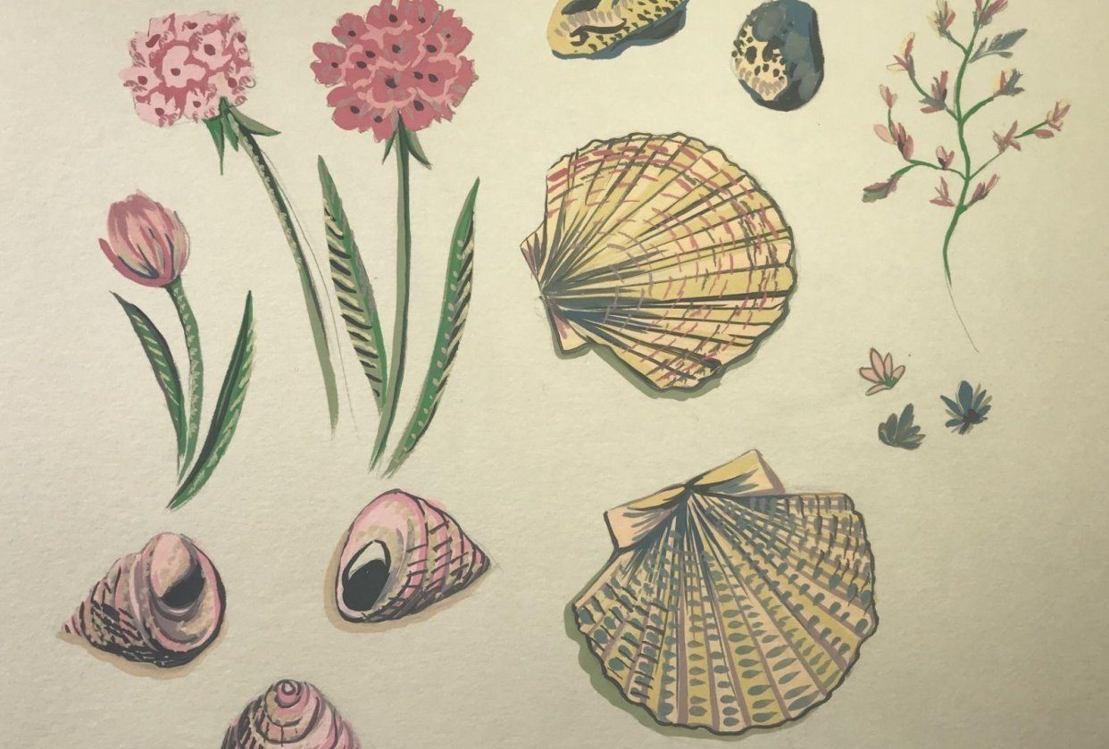 Seaside inspiration - student project
