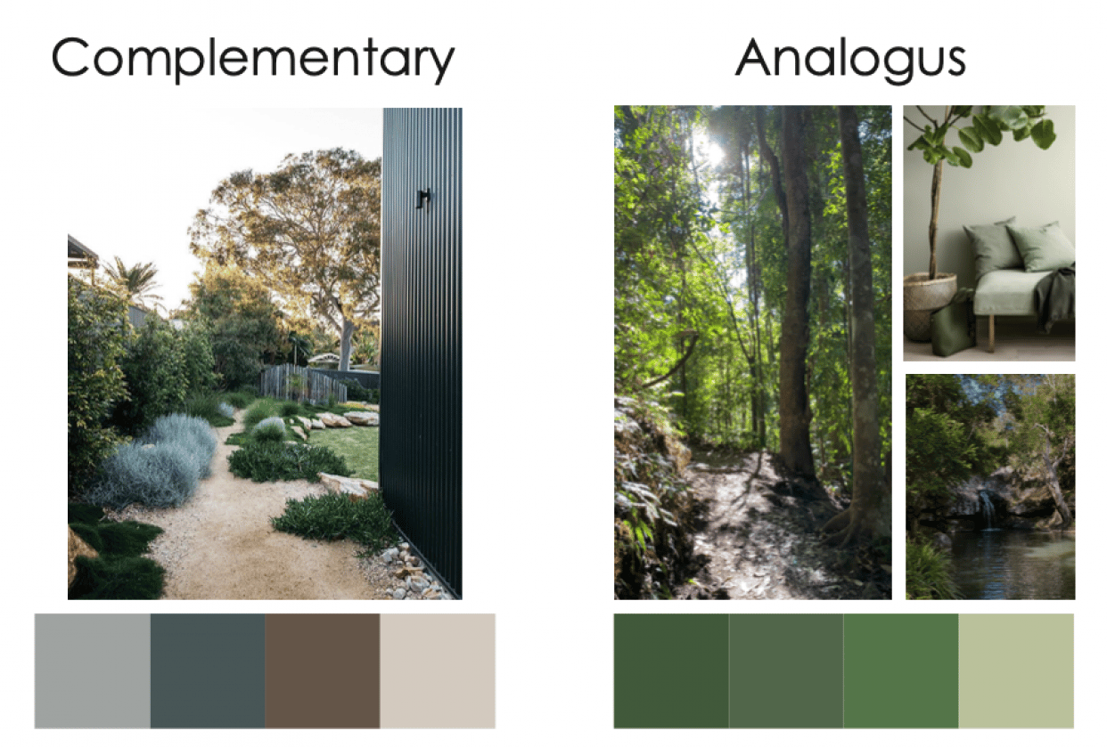 Mood Board & Colour Palettes - student project