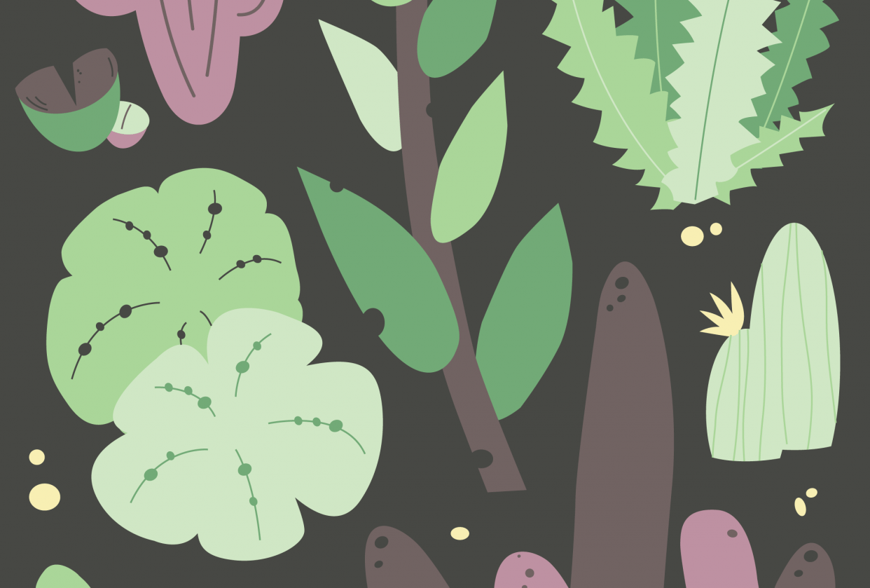Blooming Cactus Composition - student project