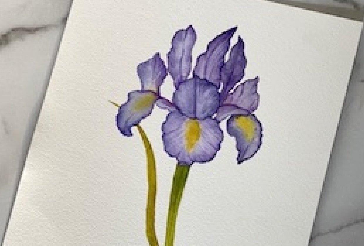 Lootanical Iris - student project