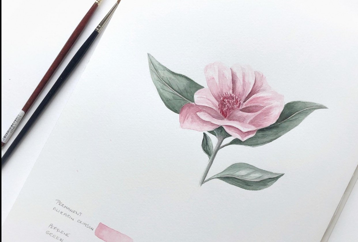 Simple Pink Flower - student project