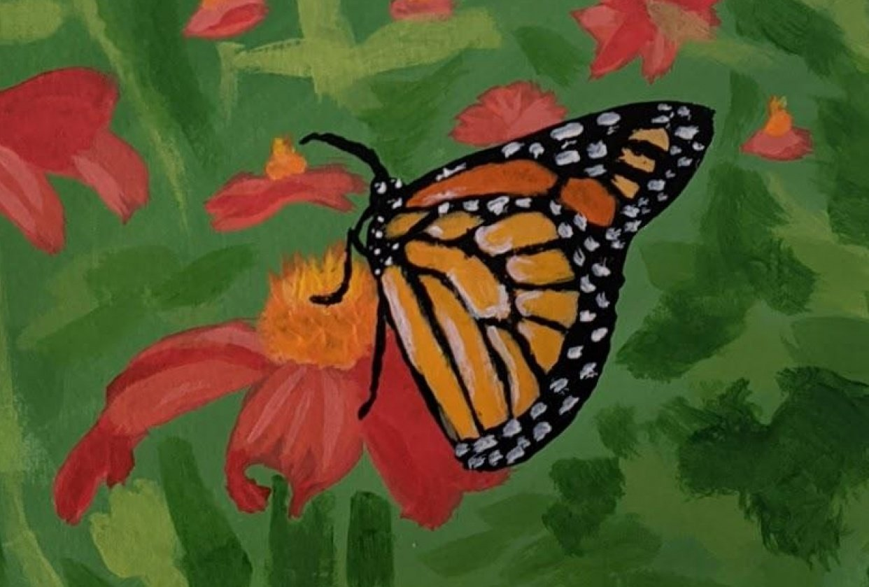 Monarch Butterfly - student project