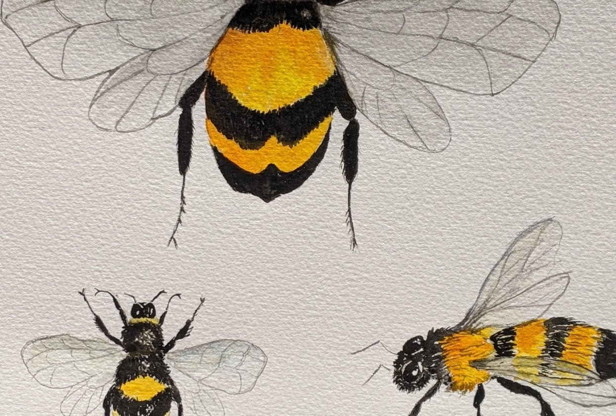 Four Bees - student project