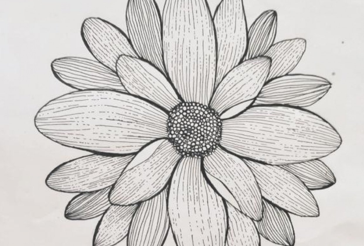 little daisy - student project