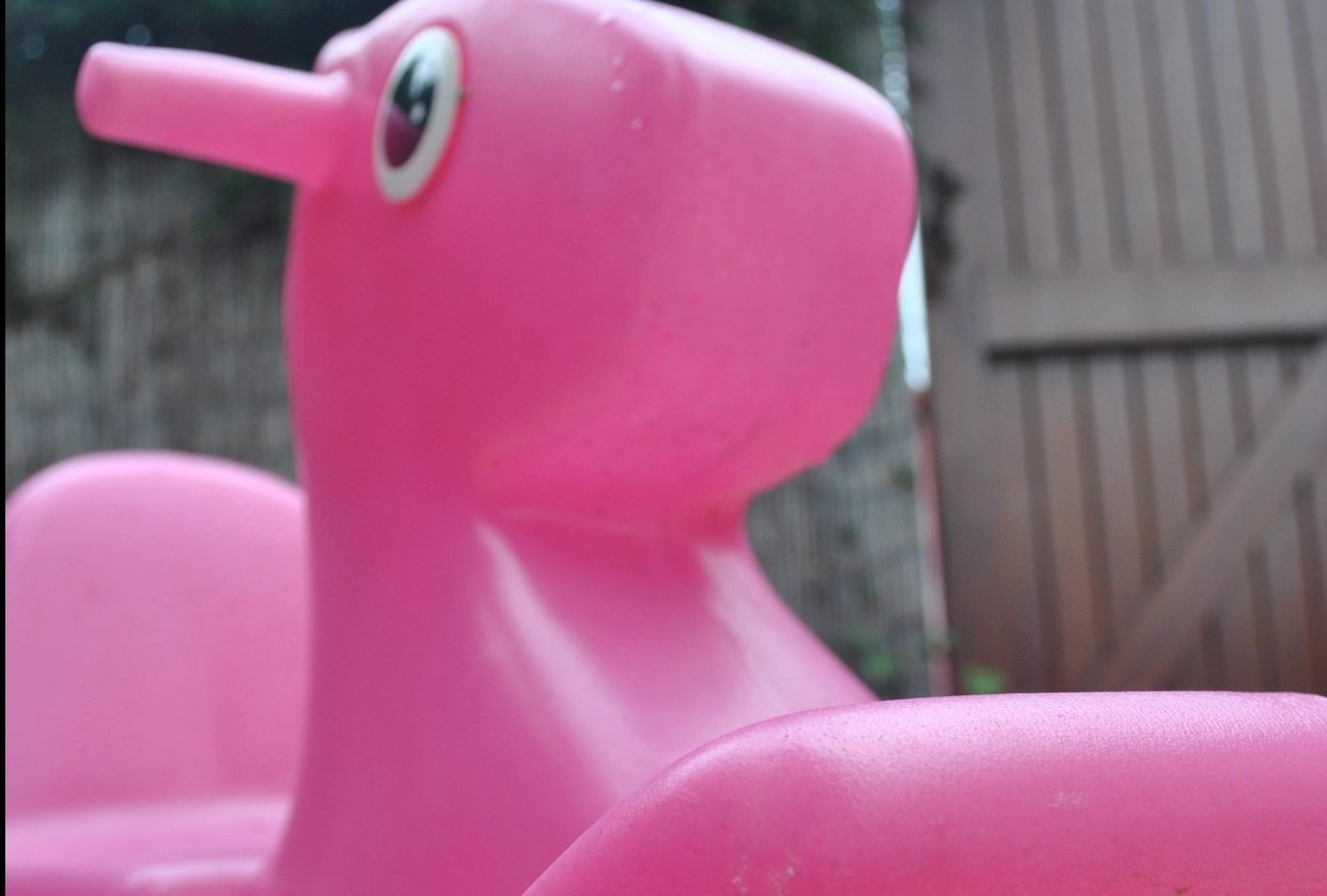 Pink Horse - student project