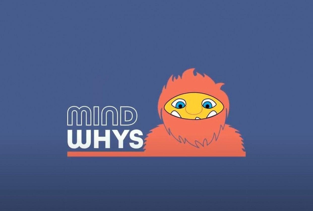 MindWhys Animation - student project