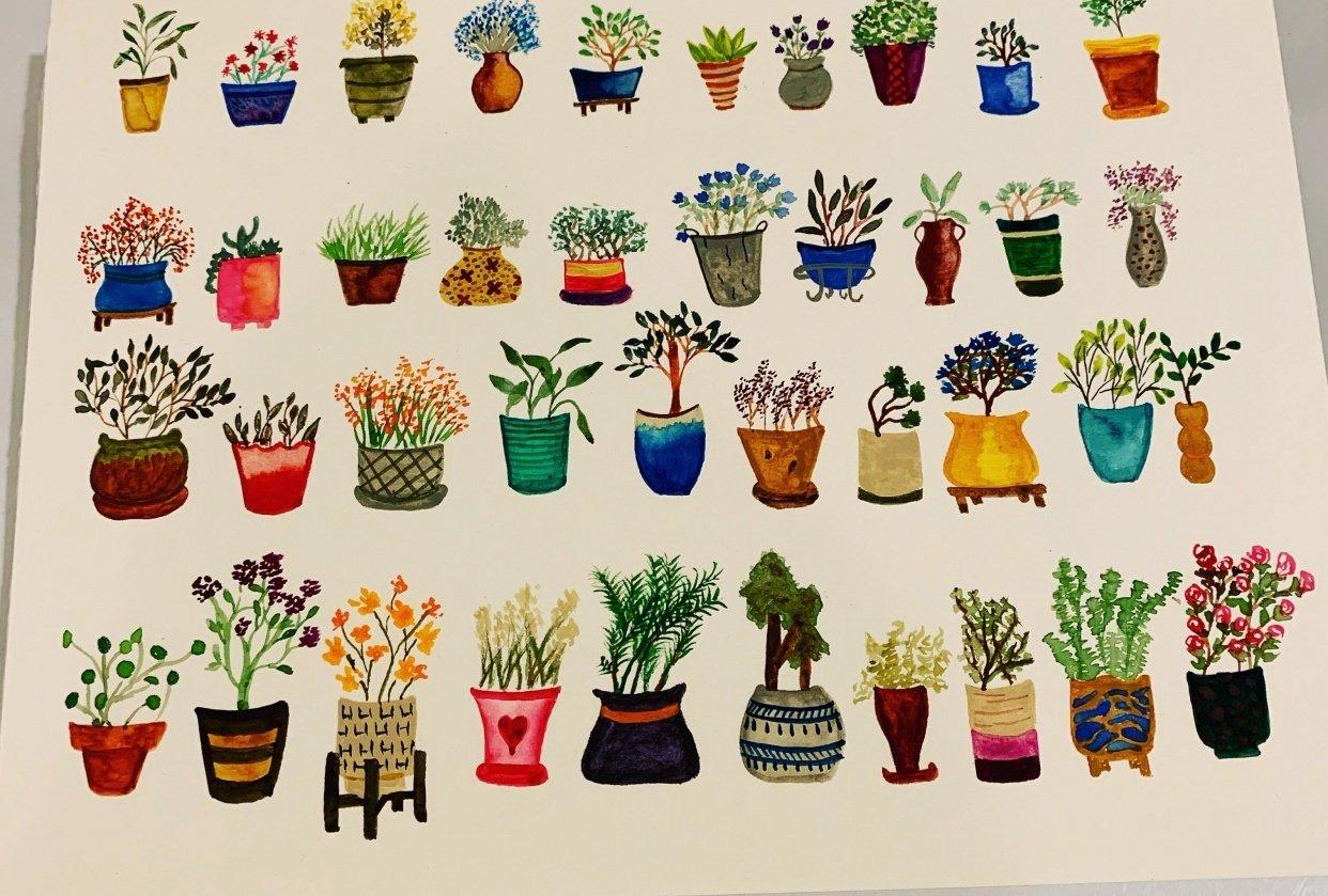 Tiny houseplants - student project