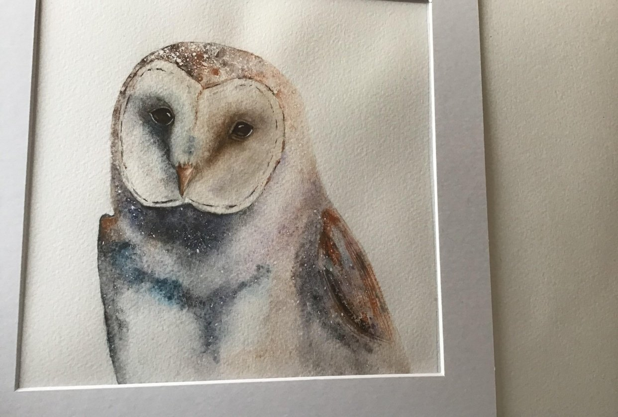 Barn Owl :-) - student project
