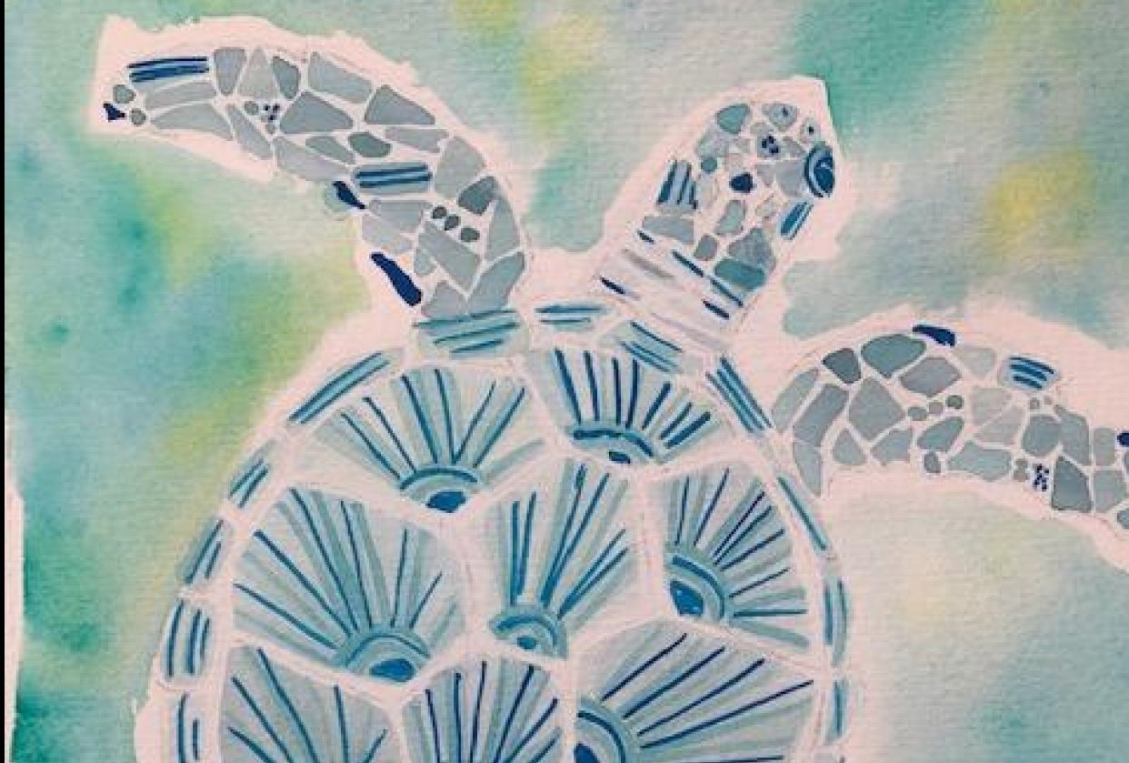 Sea Turtle - student project