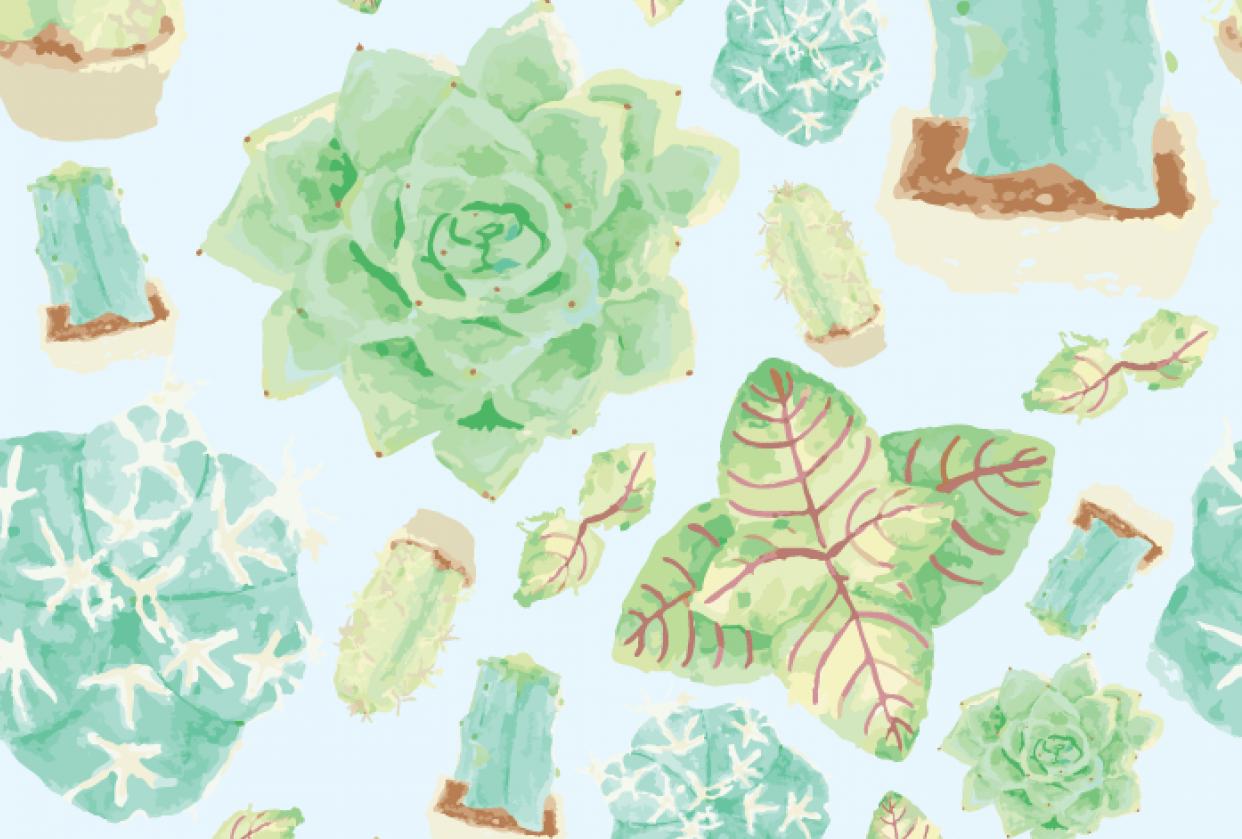 Succulents Pattern - student project