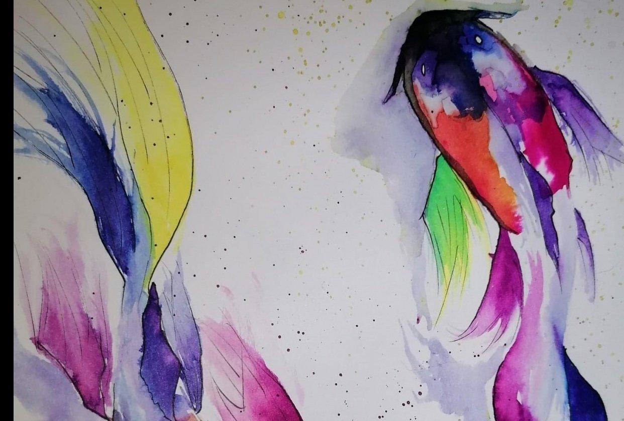 Koi Fish Liquid Watercolour - student project