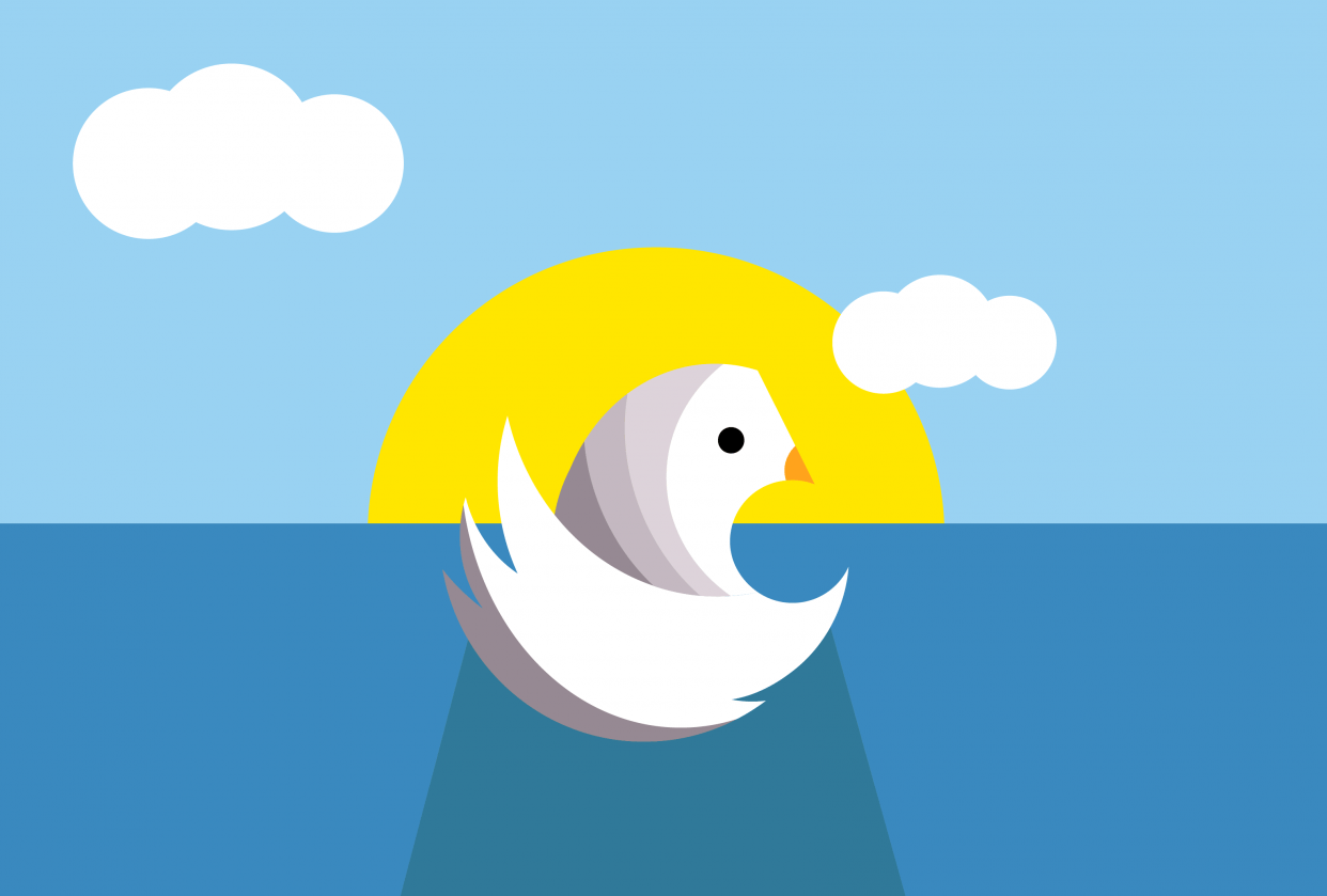 Swan Homework - student project