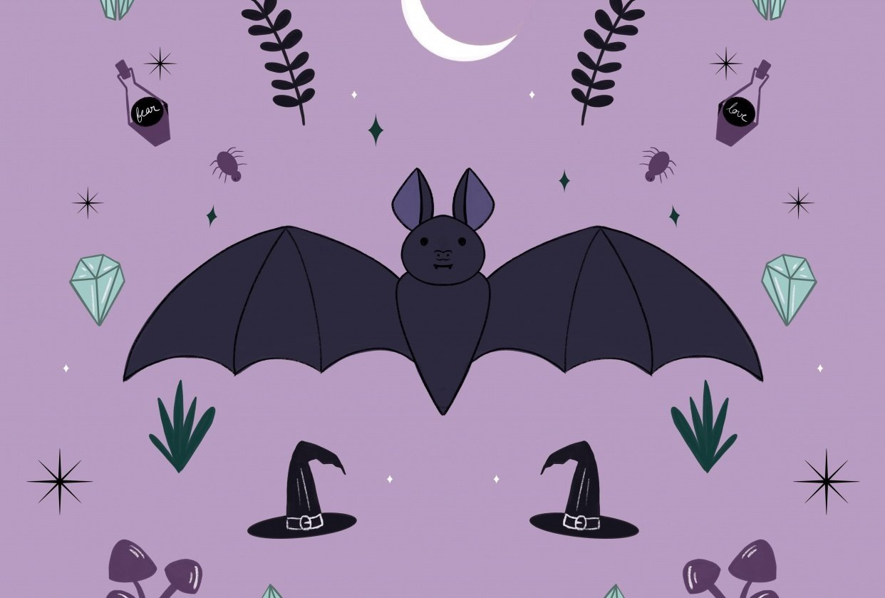 Friendly Bat and pretty Moth - student project
