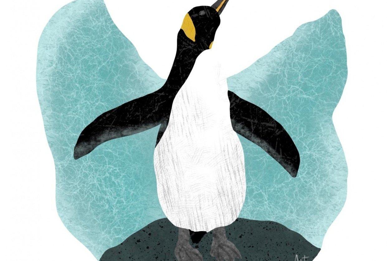 Penguin Flat-ish illustration - student project