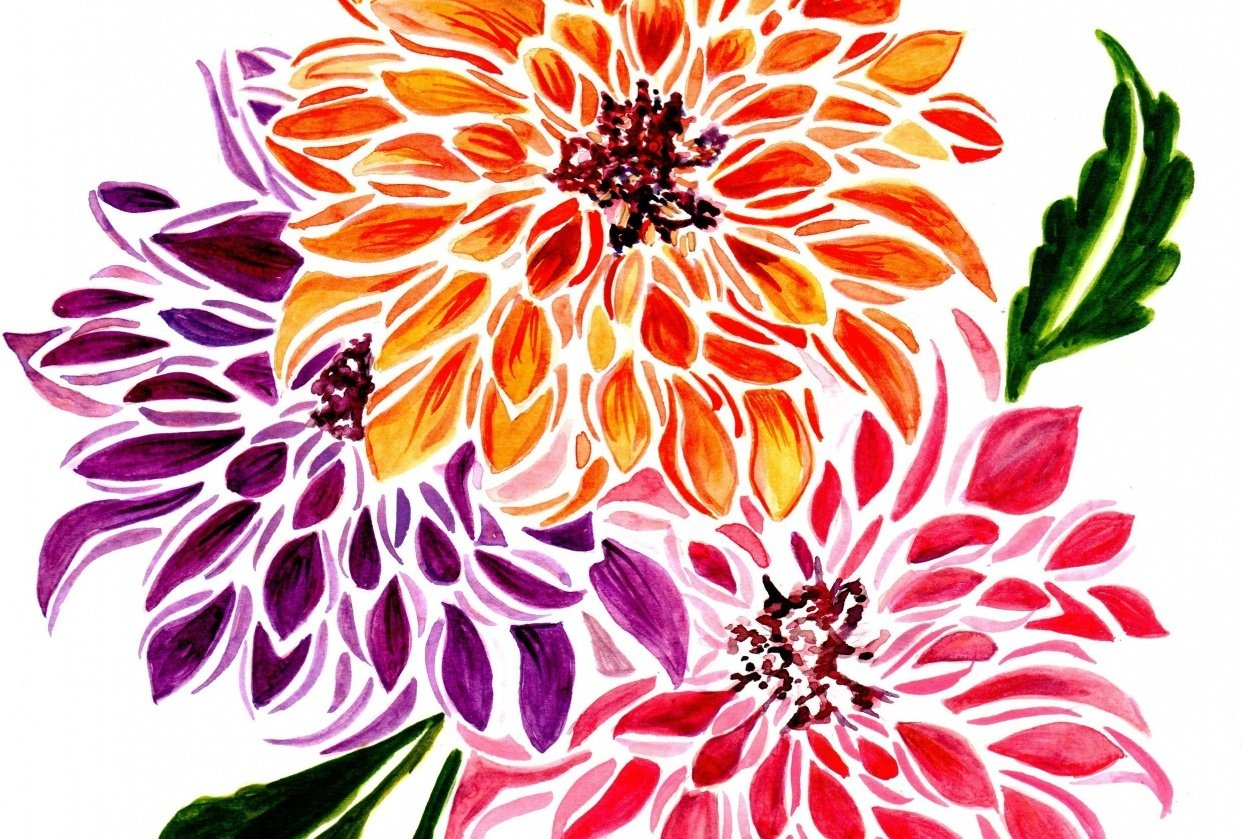 Dahlias Modern Style - student project