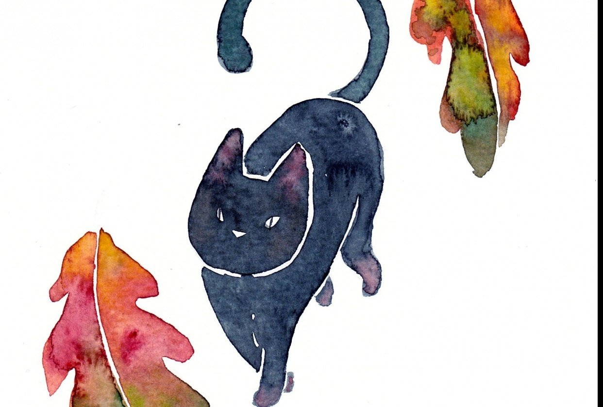 Cat with fall leaves - student project