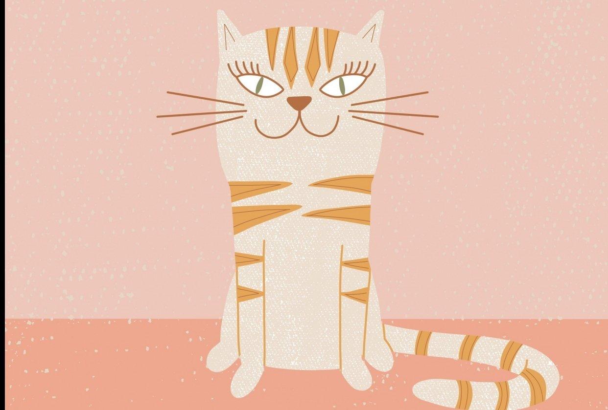 Stylized Cat Illustration - student project