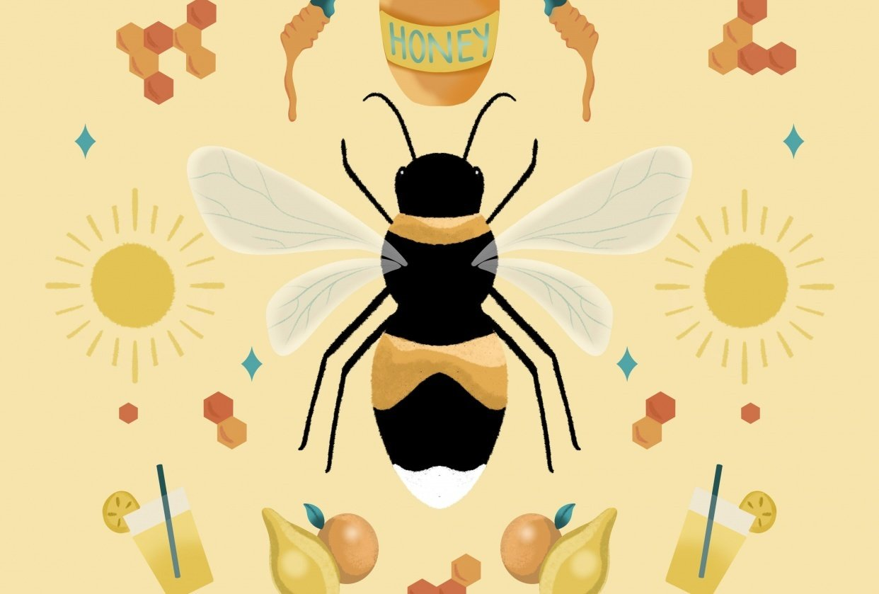 Fun with Symmetry - Honey Bee - student project