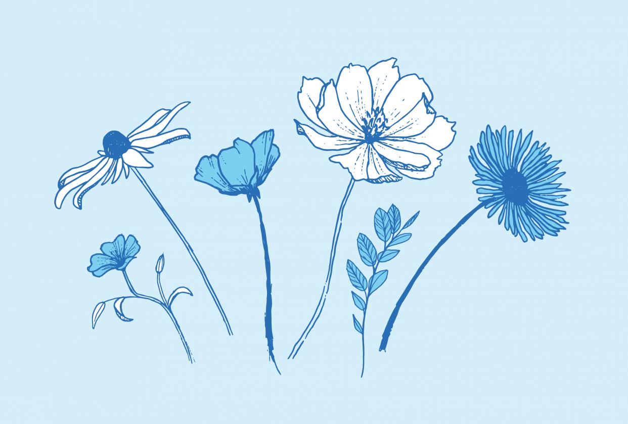 Blue Bouquet - student project