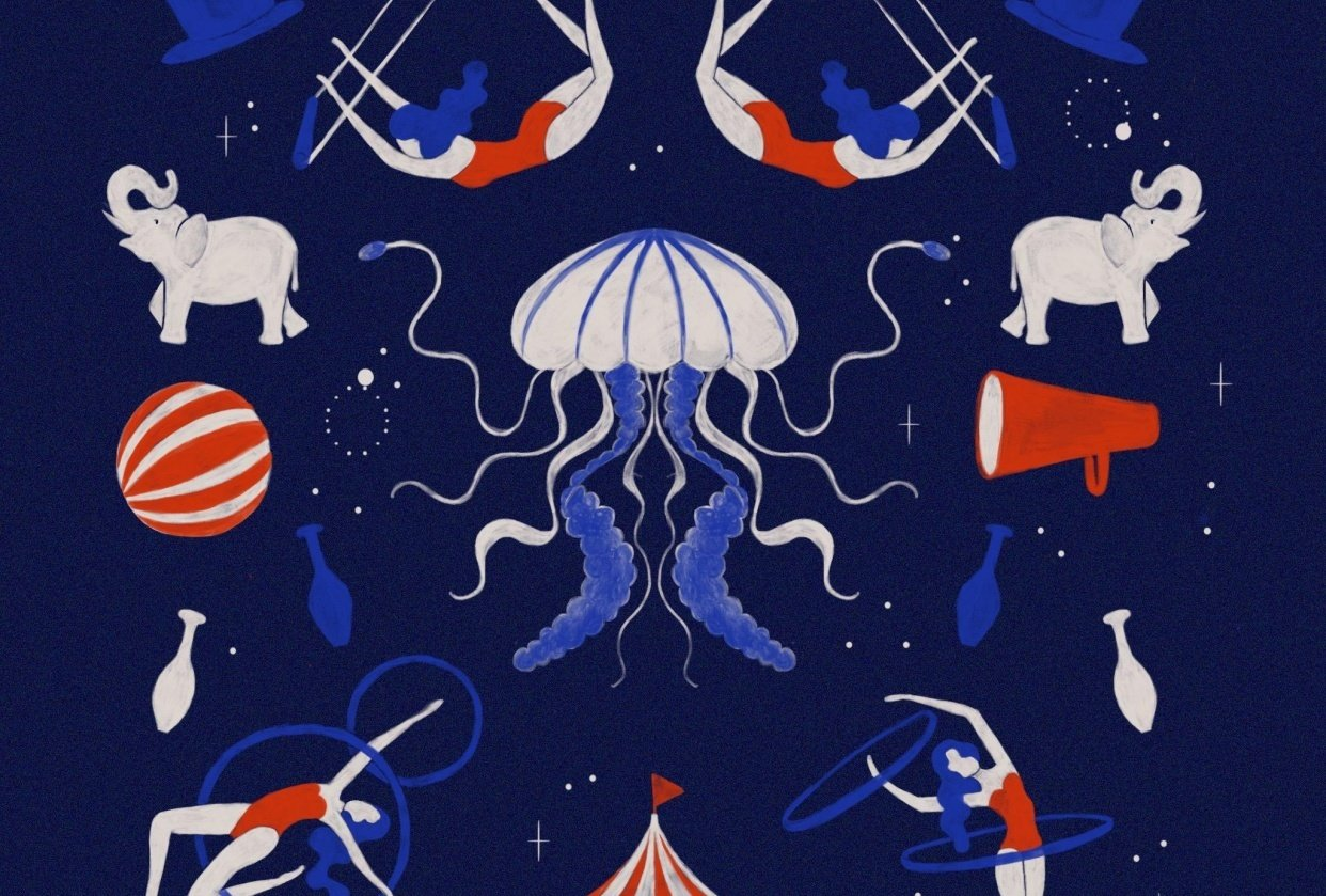 Jellyfish and Circus - student project
