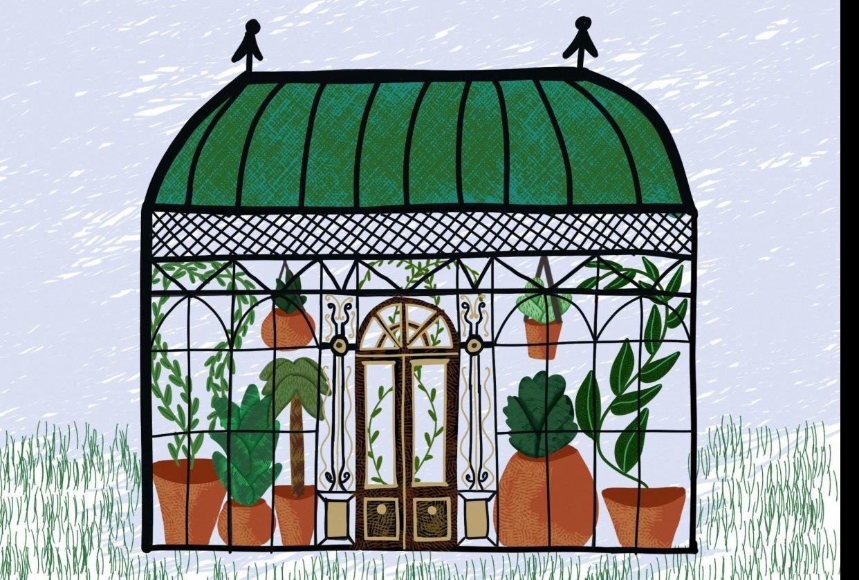 Greenhouse illustration - student project