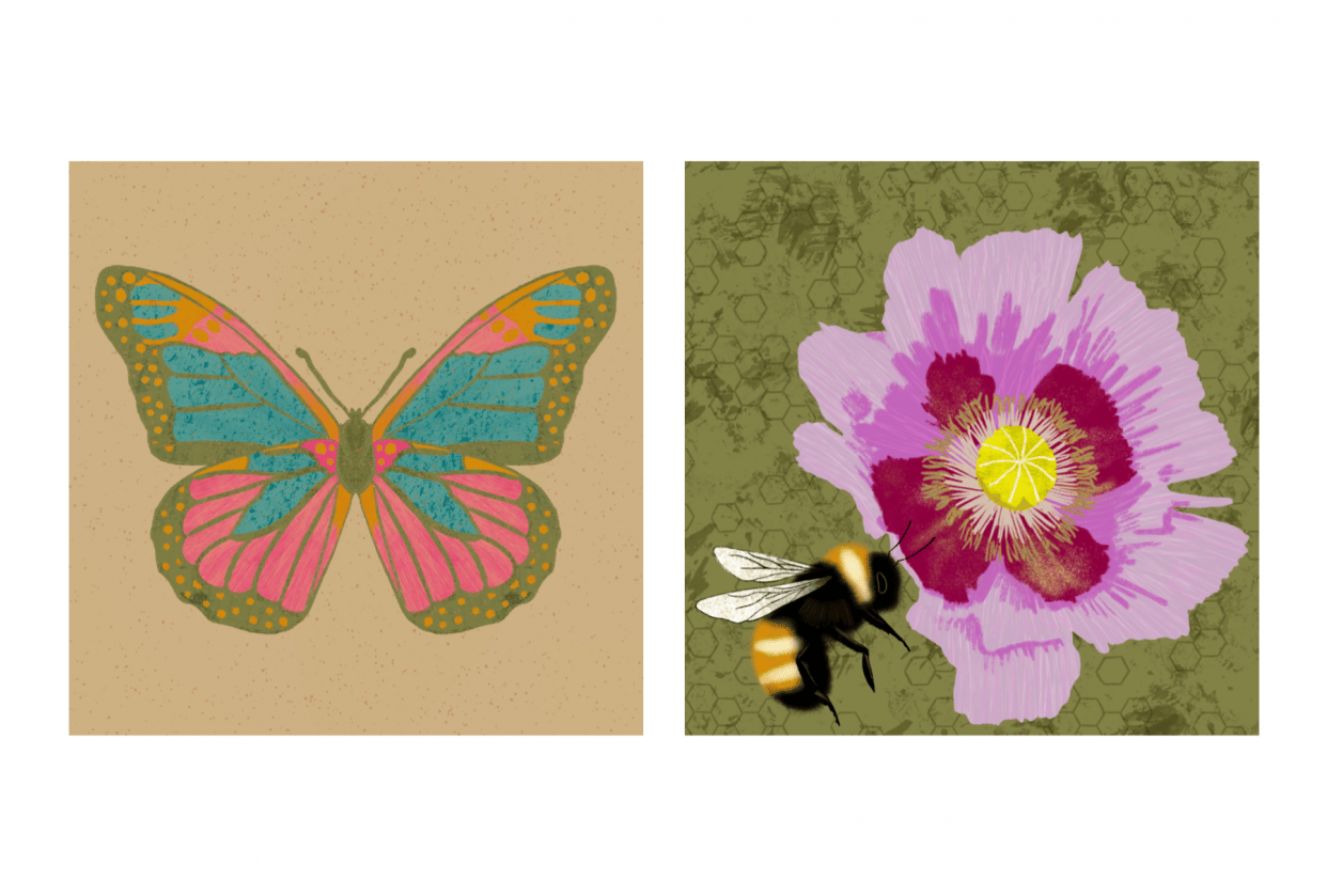 Animated insect illustrations - student project