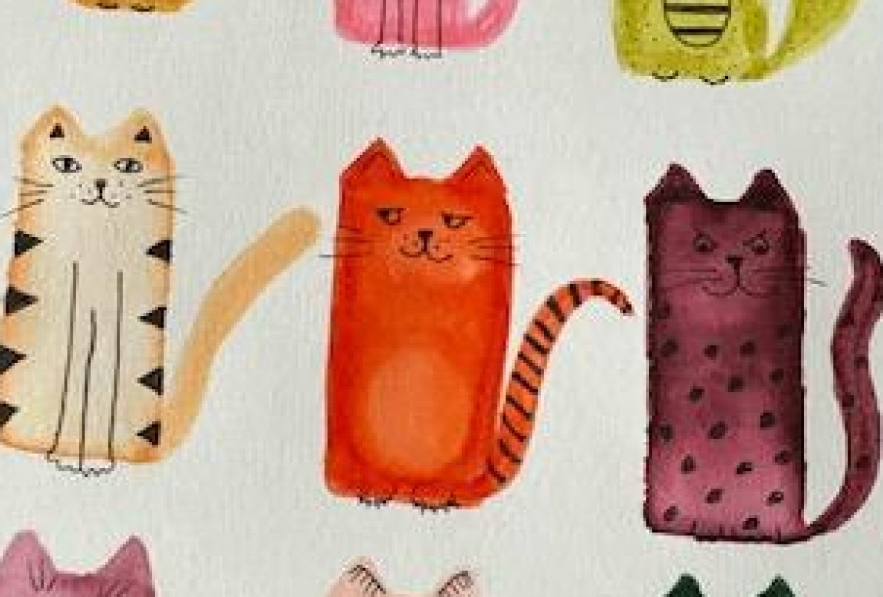 Cats Using Simple Shapes - student project