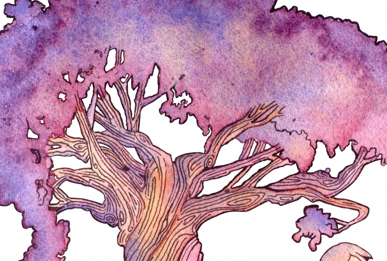 Island Tree - student project