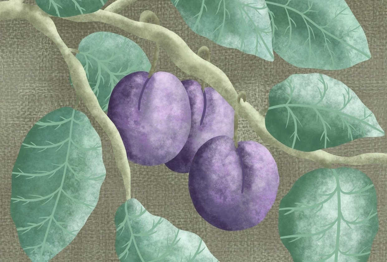Purple And Green Textures - student project