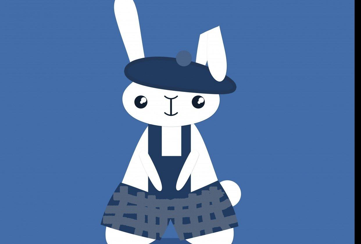 a Rabbit - student project