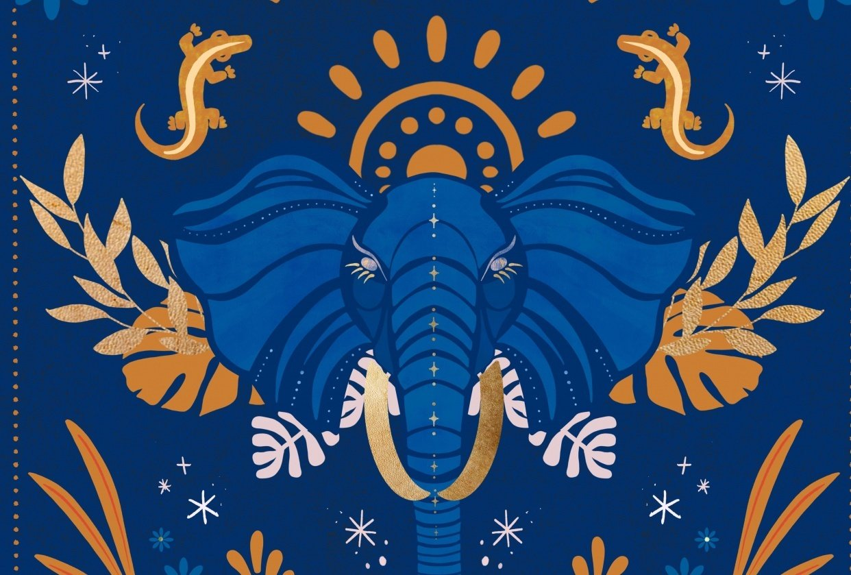 Pretty Pachyderm - student project