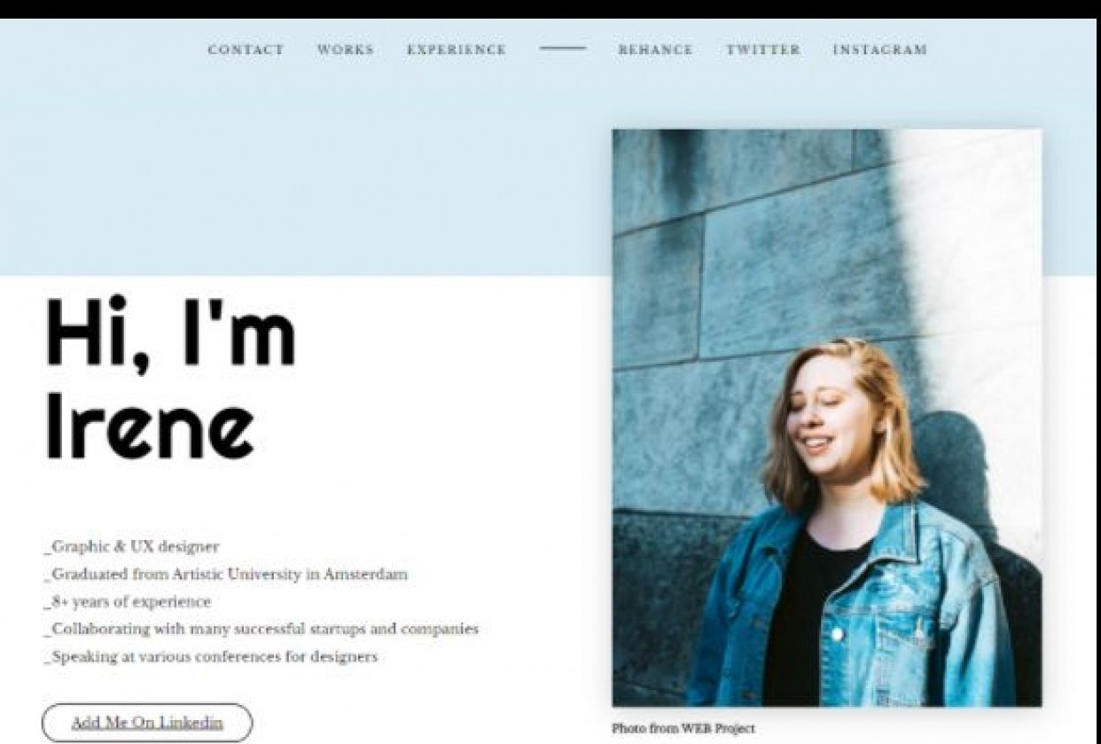 Portfolio- Demo Website Project - student project
