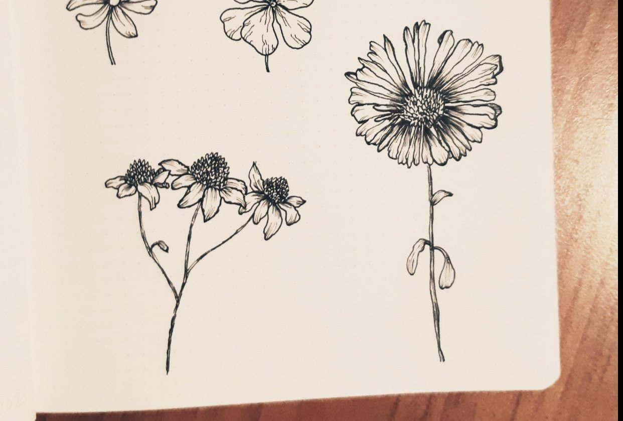 Ink Flowers - student project