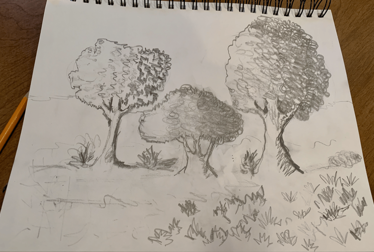 Trees in Shadow - student project