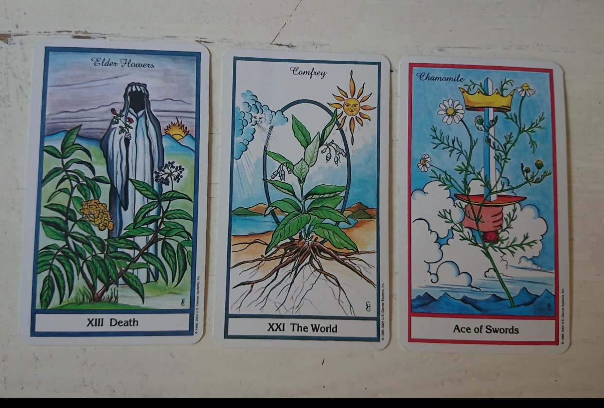 The 3 Card Spread - student project