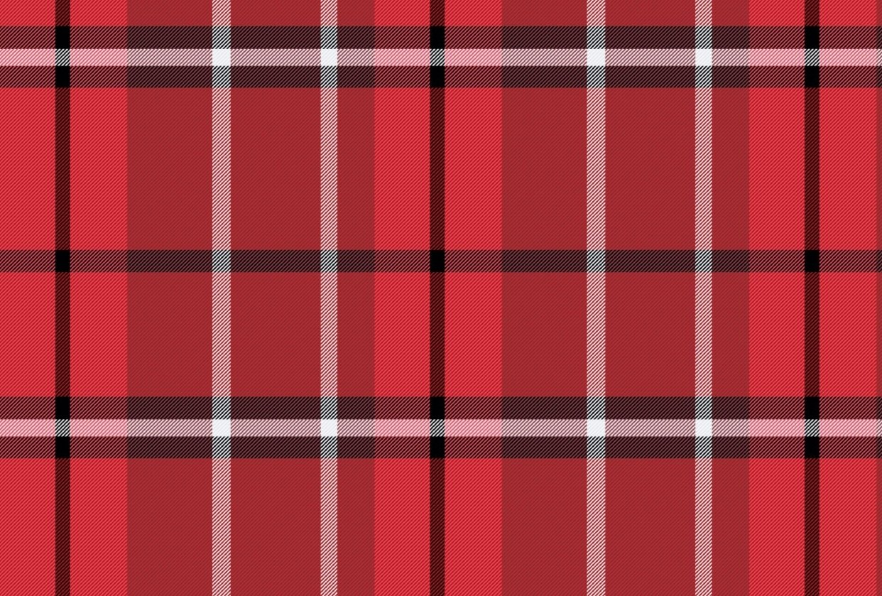 Red & Black Plaid - student project