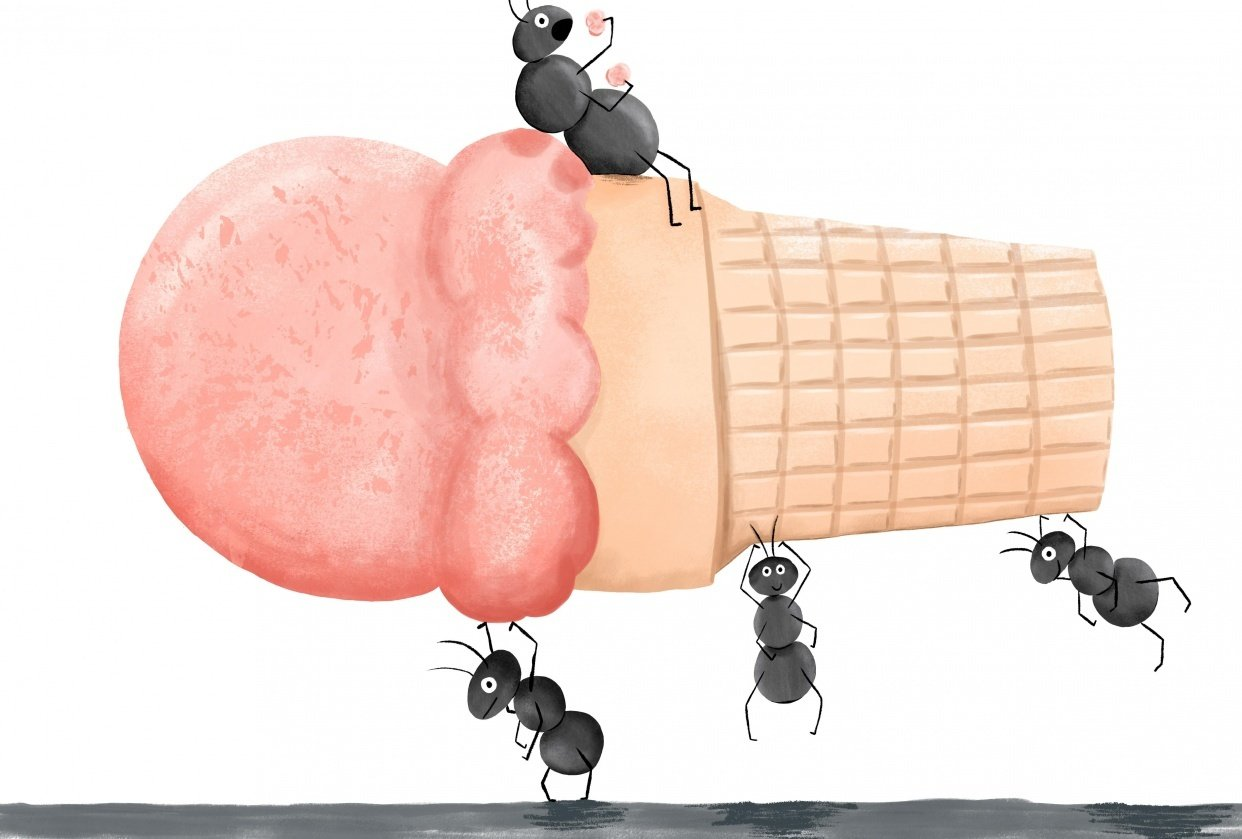 Ant Ice Cream Social - student project