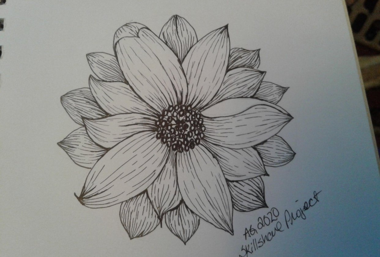 Daisy skillshare project... - student project