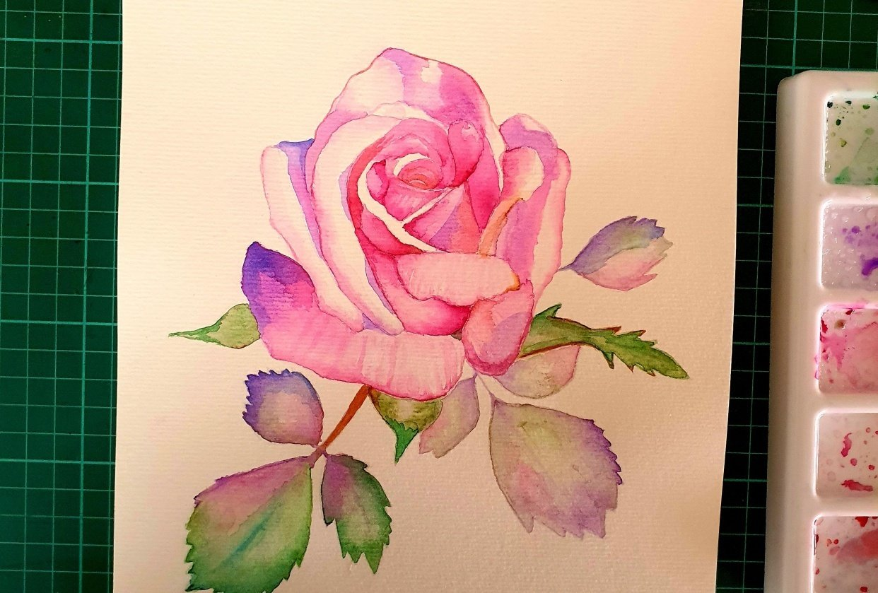 Pink rose :) - student project