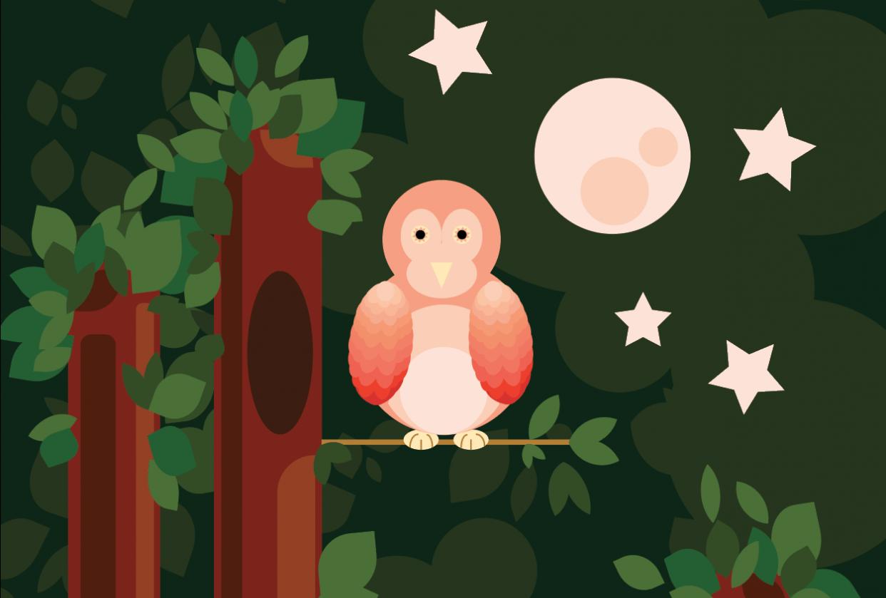 Owl Basic Shape Practice - student project