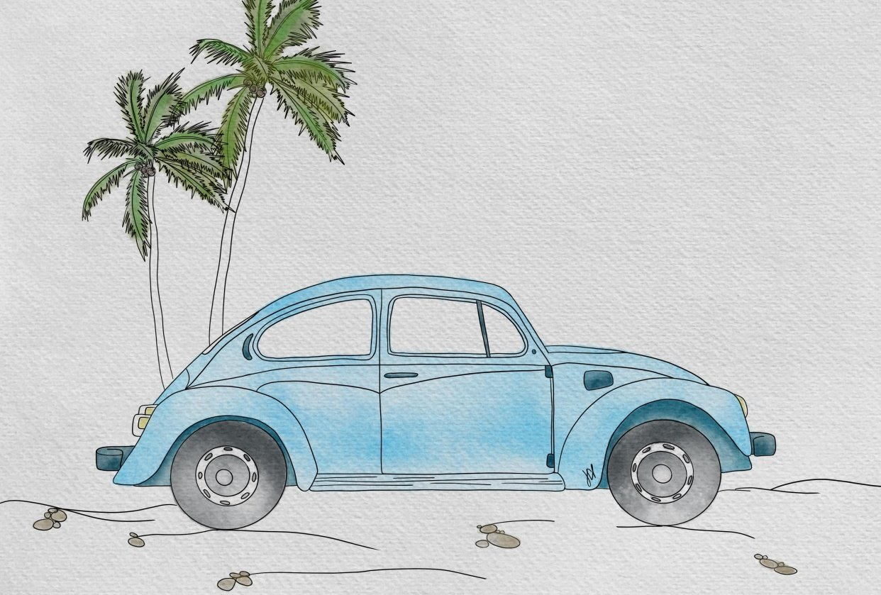 Beach Beetle - student project