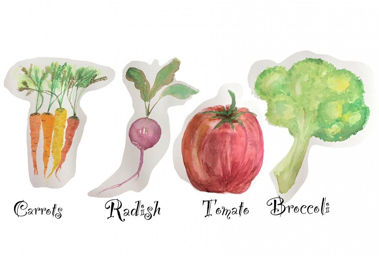 Bianca's veggies - student project